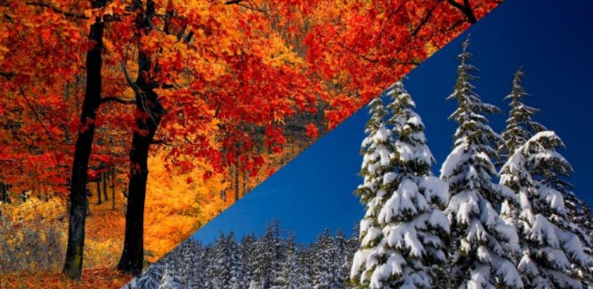 colores calidos en la naturaleza